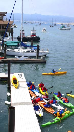 Adventure out in the bay on a kayak or electric boat