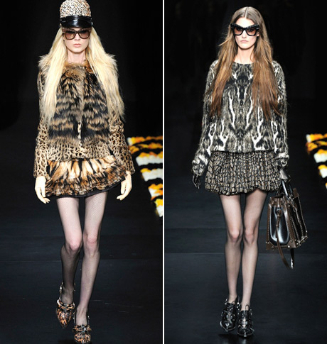 Wild Diva by Roberti Cavalli for Marcolin